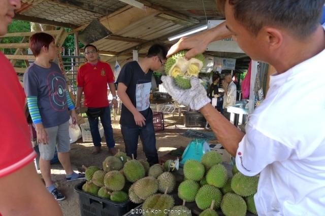 P1180867Johor Bahru durian review