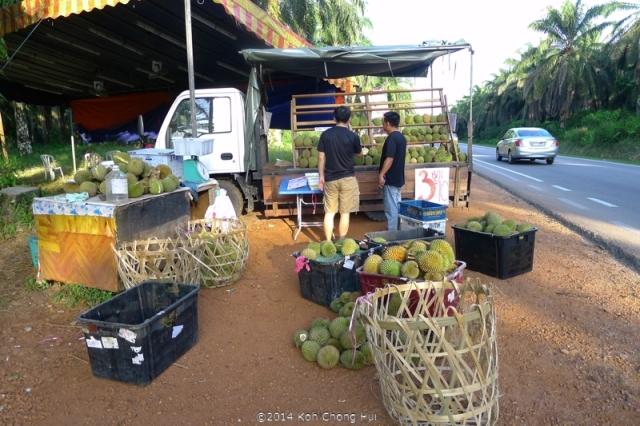 P1180883Johor Bahru durian review