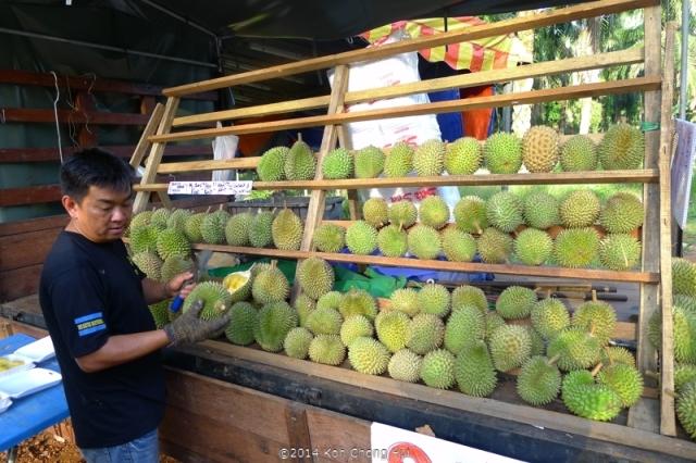 P1180895Johor Bahru durian review