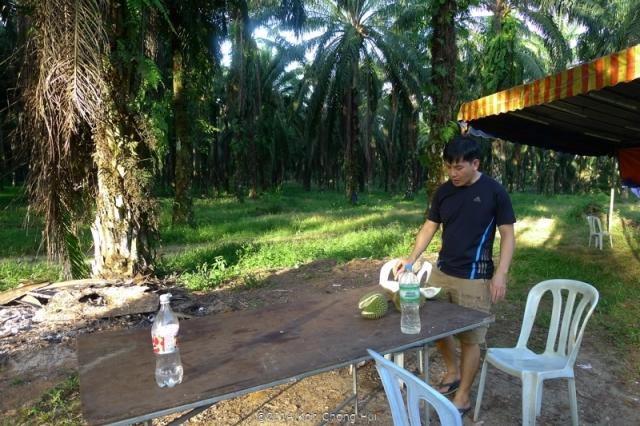 P1180901Johor Bahru durian review